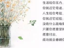 广州成学教育科技公司怎么样?自考学霸分享学习小技巧!